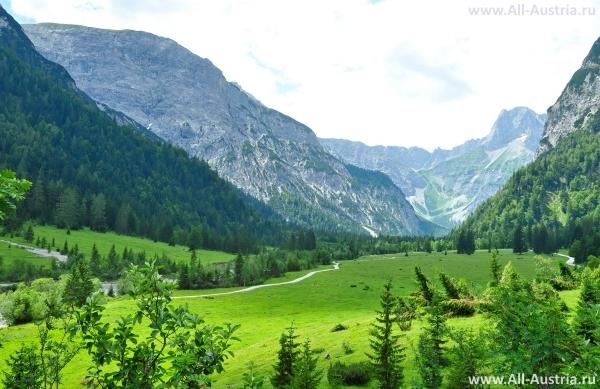 Альпийские луга Австрии